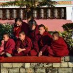 buddhist monastry
